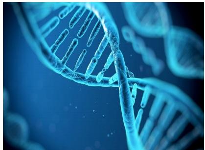 دانلود جزوه کامل فصل 5 زیست دوم ماده ژنتیک